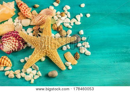 An overhead photo of a sea star, sea shells, and pebbles on a vibrant turquoise background, a design template for a summer vacation banner, with copy space