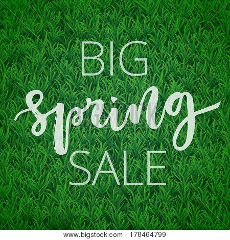 Big spring sale hand written inscription on green grass background