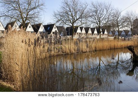 Ditch in a residential district in the Netherlands