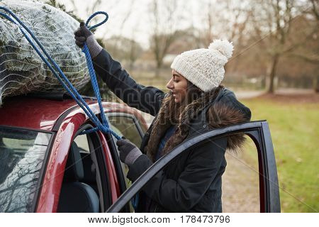 Young woman tying Christmas tree to roof of a car, side view