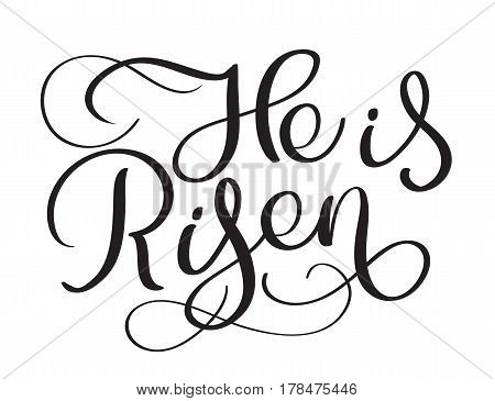 He is Risen text on white background. Calligraphy lettering Vector illustration EPS10.