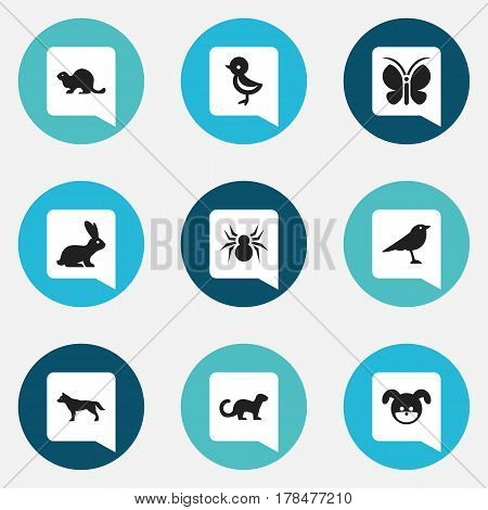 Set Of 9 Editable Animal Icons. Includes Symbols Such As Moth, Puppy, Dog And More. Can Be Used For Web, Mobile, UI And Infographic Design.