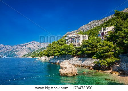 beautiful coastline with green pines in Brela Makarska Riviera Croatia