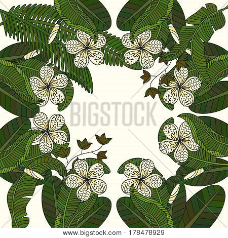 Round vector ornament with tropical plumeria flowers.