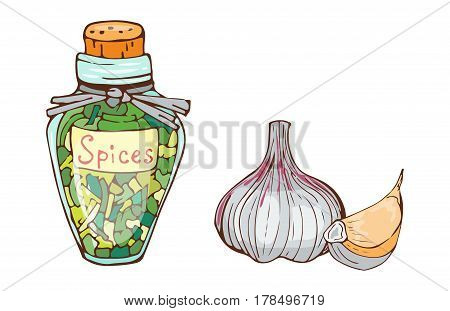 Jar with cooking ingredients pepper garlic paprika curry and seasoning hand drawn style vegetable ingredient vector illustration. Aromatic culinary powder colorful aroma spices glass container.