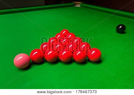 Red snooker balls prepared for the game on green table. Pink ball in front of the red balls and black ball way behind. Snooker game.