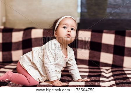 One year baby girl crawls on checkered sofa. Cute little corious baby.