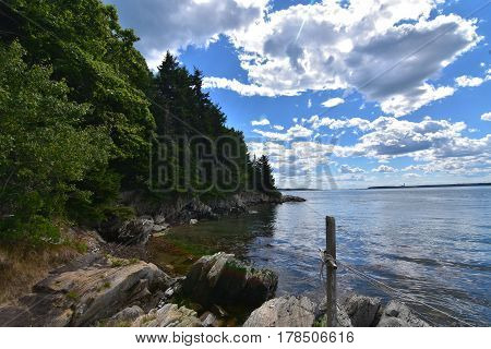Rocky shoreline and trees along Casco Bay in Maine.