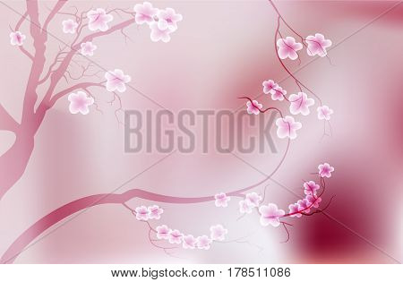 Pink cherry blossom sakura flowers in a Japanese style