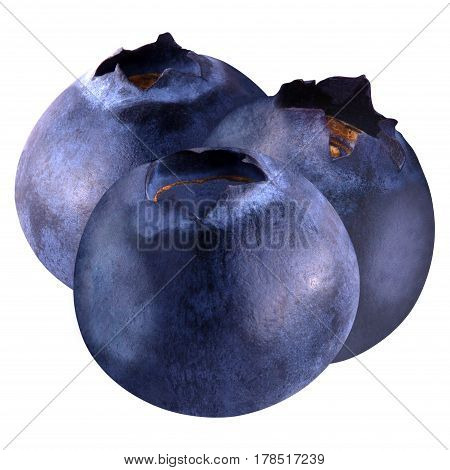 Isolated blueberries. three blueberries isolated on white background as package design element. Healthy eating.