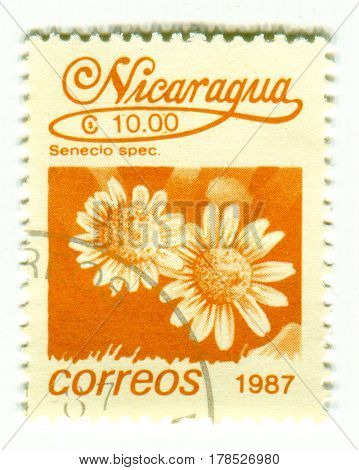 GOMEL, BELARUS, 24 MARCH 2017, Stamp printed in Nicaragua shows image of the Senecio spec, circa 1987.