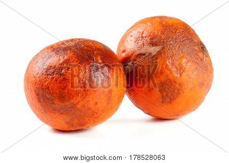 two damaged tangerines isolated on white background.