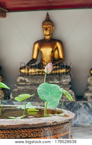 Lotus Flower In Thailand Monastery With Buddah Statue Background
