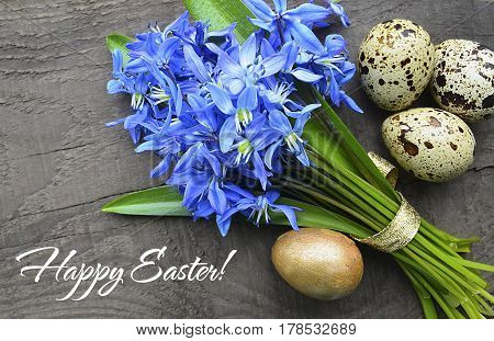 Happy Easter.Easter decoration with Blue Scilla (Squill) flowers,golden Easter egg and quail eggs on old wooden background.Selective focus.