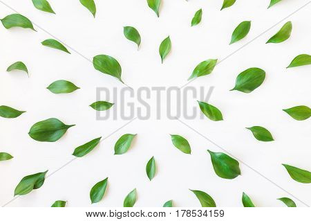 Leaf pattern. Frame made of green leaves. Flat lay top view