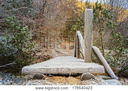 Wooden bridge by a footpath. Covered in frost.