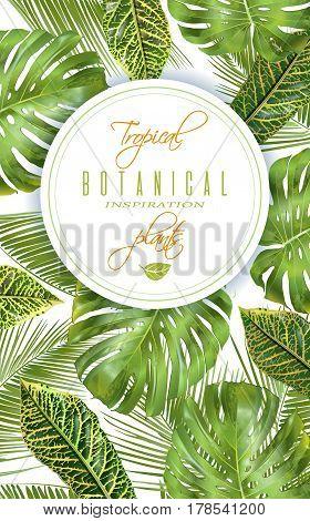 Vector Tropical Vector Photo Free Trial Bigstock