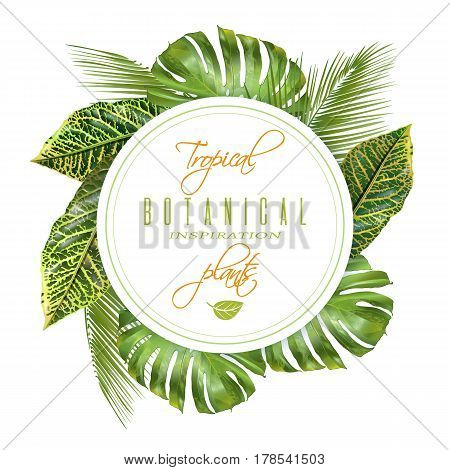 Vector tropical round banner with monstera and croton leaves. Exotic design for cosmetics, spa, health care products. Can be used as wedding or summer background. Best for wallpaper, fabric