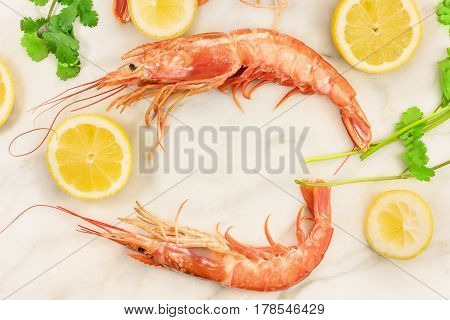Raw shrimps with slices of lemon and cilantro leaves, shot from above on a white marble table with a place for text