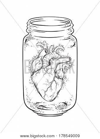 Human Heart In Glass Jar Isolated. Sticker, Print Or Blackwork Tattoo Hand Drawn Vector Illustration