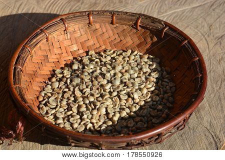 Green coffee bean extract comes from unroasted coffee beans Green coffee bean after pulping hulling pericarp and cleaning