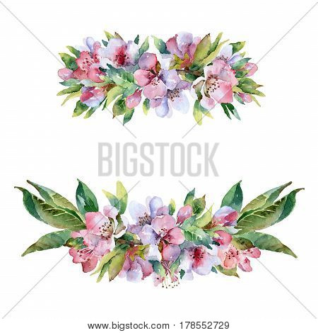 Set compositions with flowering branches isolated on white background. Watercolor illustration