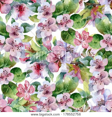 Seamless floral pattern with blooming cherry branches. Watercolor illustration