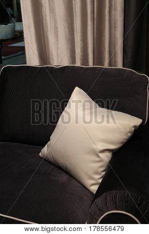 Soft comfortable sofa with a pillow in the interior