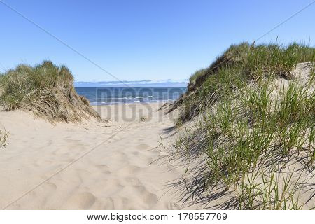 Sunny Day with Blue Sky at Beach