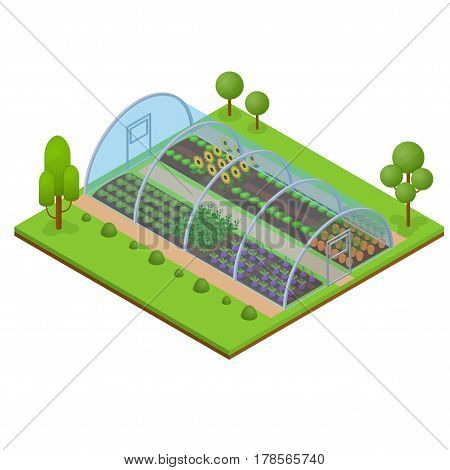 Greenhouse Isometric View Horticultural Conservatory for Plant, Vegetable and Flower Vector illustration