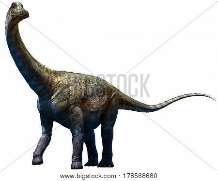 Antarctosaurus dinosaur from the Cretaceous era 3D illustration