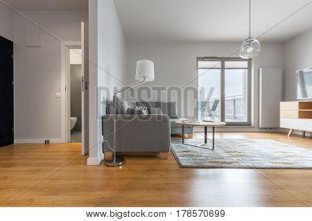 Modern Living Room And Hallway