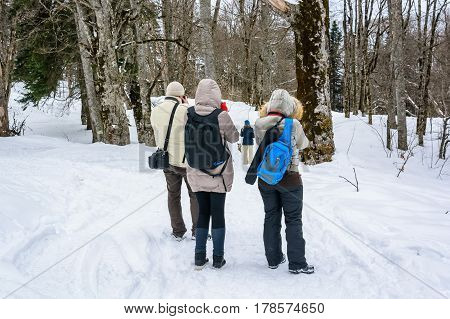 Back view of group of outdoor photographers taking pictures in winter nature