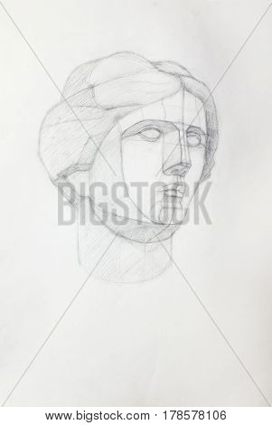 Hand drawing of the head of Venus in pencill
