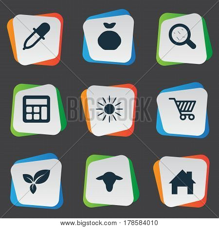 Vector Illustration Set Of Simple Agricultural Icons. Elements Buffalo, Calculator, Sunshine And Other Synonyms Insolation, Sunshine And Leaves.