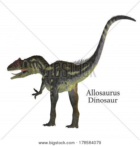 Allosaurus Dinosaur Tail with Font 3d illustration - Allosaurus was a carnivorous theropod dinosaur that lived in North America in the Jurassic Period.