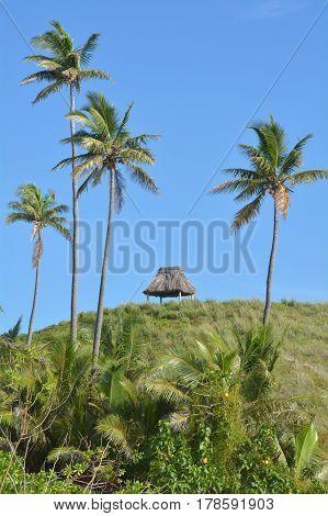 Landscape Of A Remote Tropical Beach In The Yasawa Islands Fiji