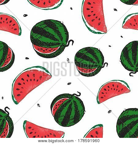 Water Melon Seamless Pattern Vector Illustration isolated on white background