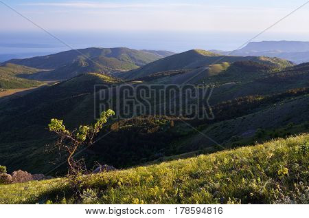 Summer landscape with green hills. View of the sea coast. Sunny morning