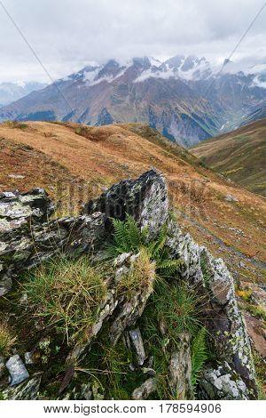 Mountain landscape. Cloudy autumn day. Beautiful ferns and rocks. Caucasus, Georgia, Zemo Svaneti