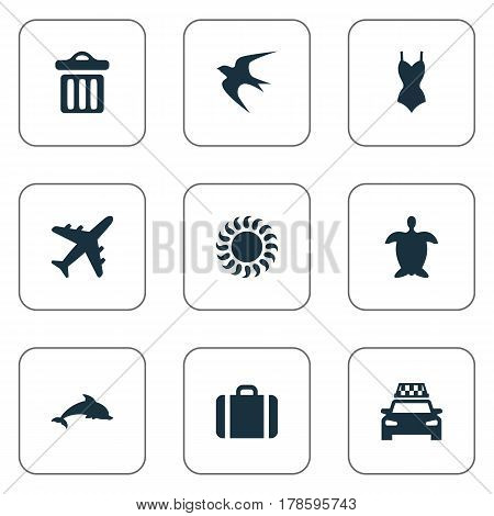 Vector Illustration Set Of Simple Seaside Icons. Elements Tortoise, Sunlight, Mammal Fish And Other Synonyms Beachwear, Seagull And Trip.
