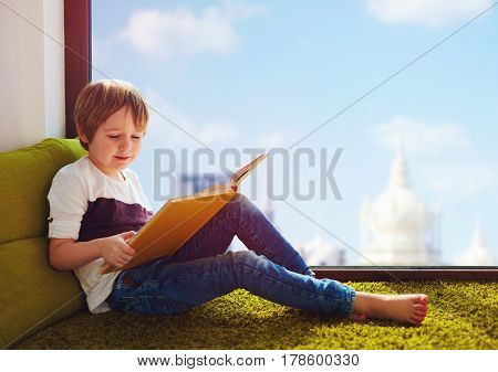 cute boy reading interesting book while sitting on carpet near the window at home