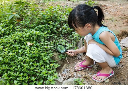 Asian Chinese Little Girl Exploring Grass With Magnifying Glass