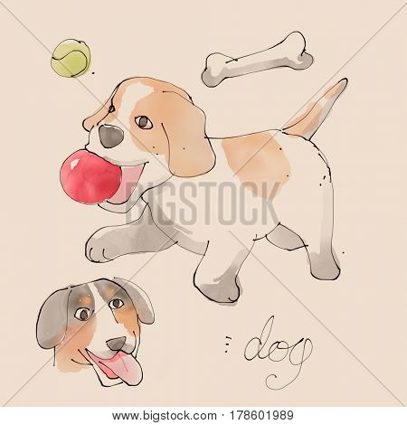 Dog Watercolor illustration