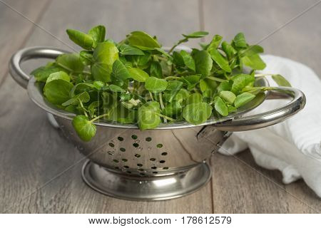 Colander filled with fresh watercress salad on wooden table