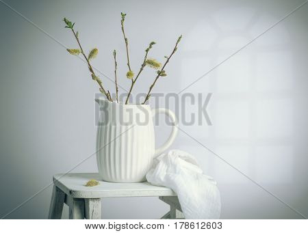 Spring still life with sprigs of catkins in ceramic jug