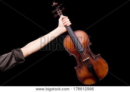 Until The Victory My Brave Violin
