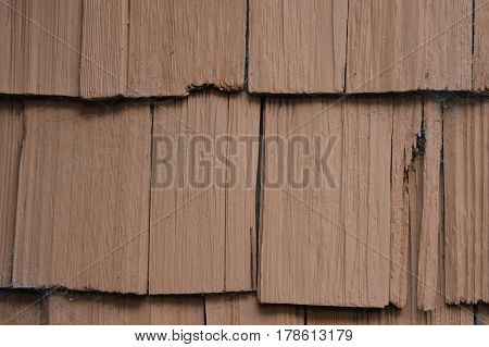 weathered and cracked beach house wood siding with spider cobwebs