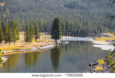 Snake river landscape in Yellowstone national park