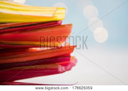 Side View Of Rainbow Chard Stems With Light Blue Bokeh Background